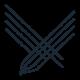 raptorbird